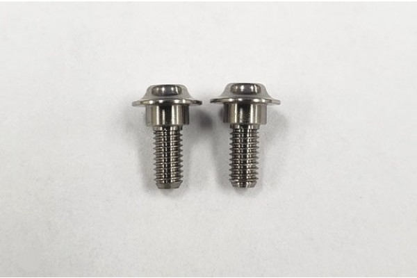 REVE D SPM Titanium Servo Screw (2 pieces) (RT-001)
